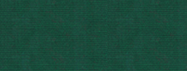 5 - Forest Green.png