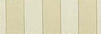 5009 - 1 - Beige - Tan Stripe.png