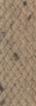 Light Brown fabric sample